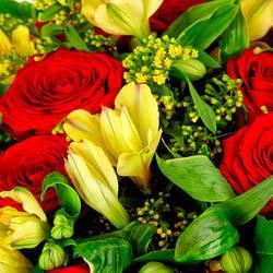 бриллиантовые розы и огромные альстромерии.jpeg