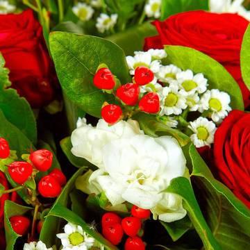 ромашки и красные ягоды.jpeg